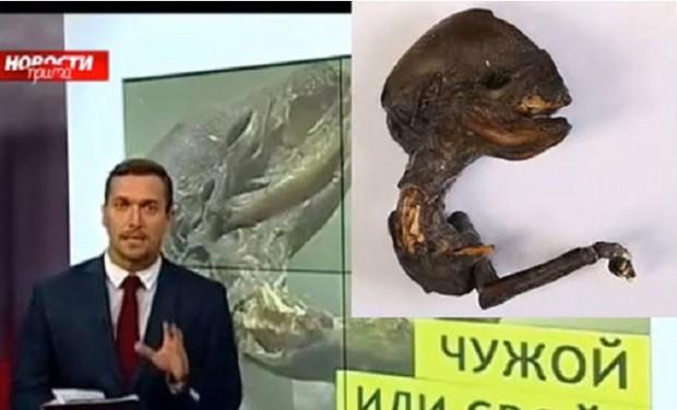 سكان بلدة روسية يعثرون على كائن غريب ظهر قرب محطة نووية
