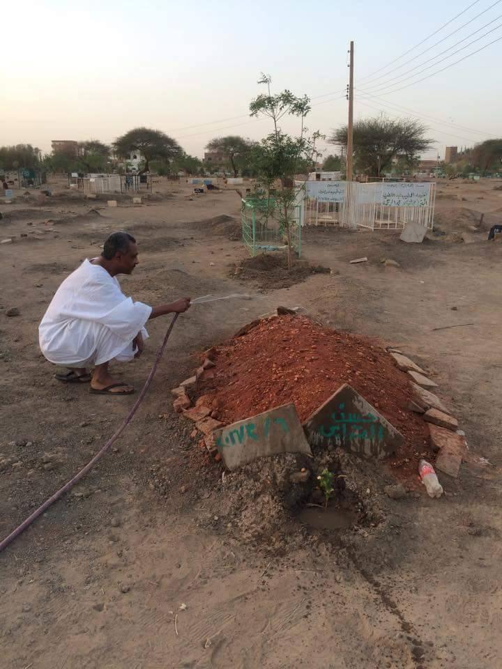 """رجل يزور قبر الشيخ الراحل """"الترابي"""" يومياً ويبلل تربته بالمياه دوناً عن بقية القبور"""
