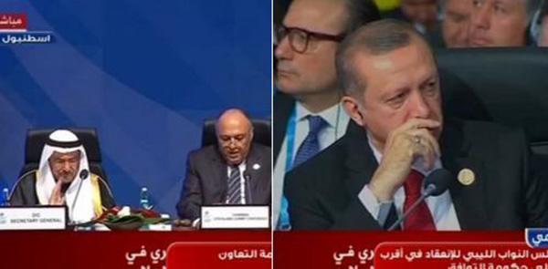 تجاهل سامح شكري وزير الخارجية المصري مصافحة الرئيس التركي