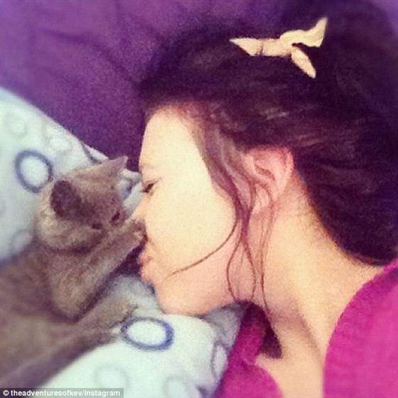 القط المندهش» يخيب توقعات الأطباء ويجذب آلاف المعجبين1
