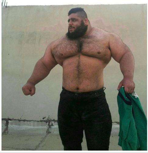 هالك إيران