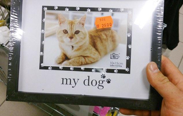 أغرب لافتات المتاجر تثير ضجة عبر الإنترنت3