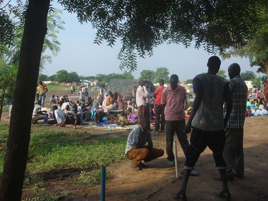الكودة يدعو لتطبيق حد الحرابة على خلفية إغتصاب سودانيات من قبل لاجئين من جنوب السودان %D8%AC%D9%88%D8%A8%D8%A73