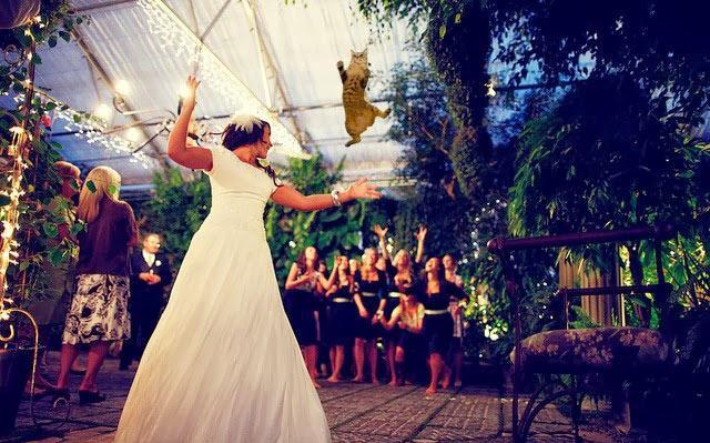 عروس - عريس - زفاف - عرس - زواج