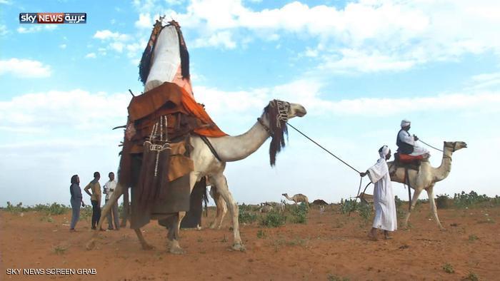 الهودج السودان غرب كردفان دارفور السودان