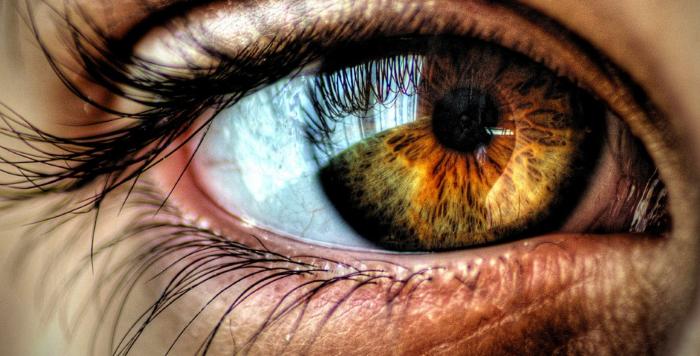 استشاري عيون يكشف أنواع ضعف النظر وطرق العلاج - نظر - عين - عيون - كشف - طب