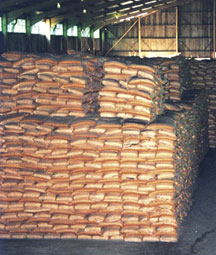 التجارة الخارجية تكشف عن سياسات جديدة لحماية إنتاج السكر محلياً