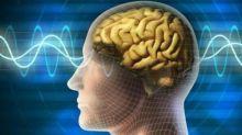 علماء يكتشفون طريقة لتشغيل الدماغ وتعطيله