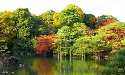 حدائق الستة قصائد الشعرية  طوكيو  اليابان